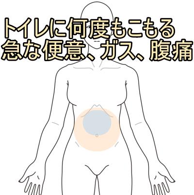 過敏性腸症候群、IBS、腹痛、ガスだまり、ガス漏れ、何度も感じる便意、札幌、白石区、鍼灸