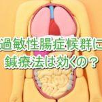 過敏性腸症候群に鍼療法は有効か?の詳細へ